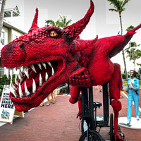 Papio Kinetic Sculpture Parade, Key West Photos by Linda Klipp